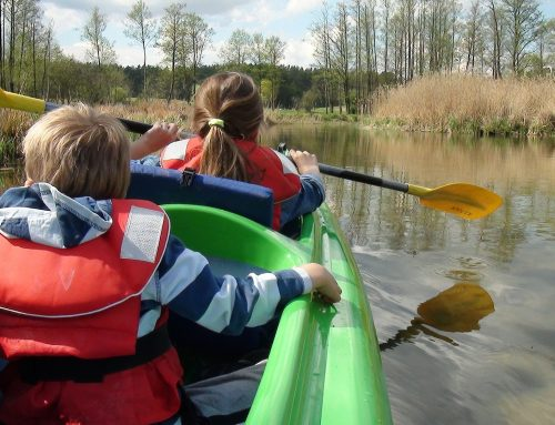 Guide to the Best Kayak for Your Kids